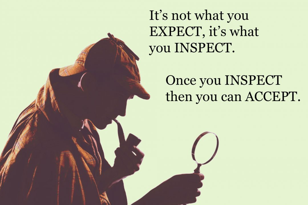 Expect & Inspect